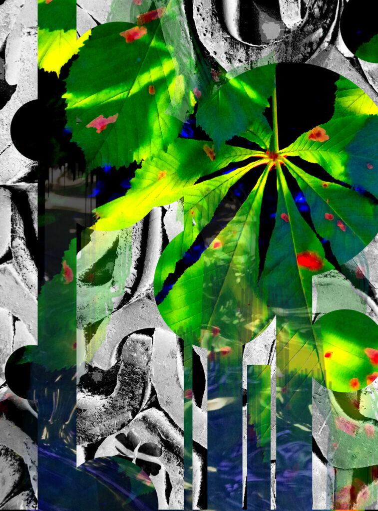Guerilla Gardening, Johann Seidl, 2013