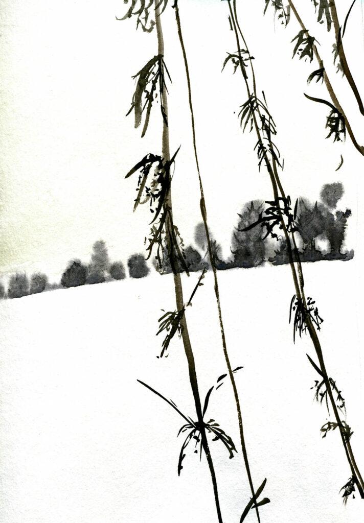 Brennnesseln im Schnee