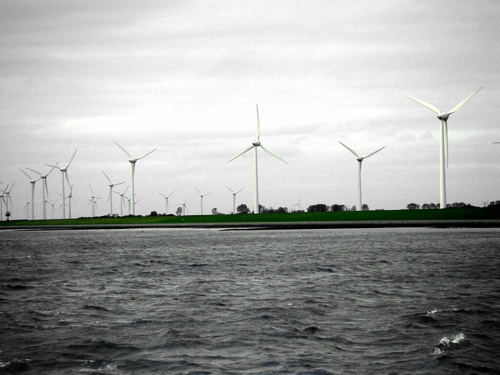 Nordseeküste - Im Dollard bei Emden