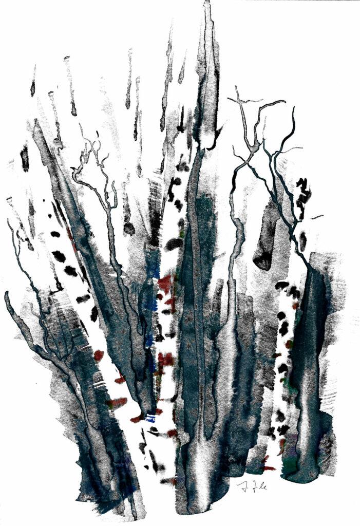 Birken über der Ilm