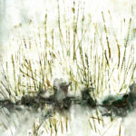 Brennesseln am Feldrain im Winter - Aquarell 2014
